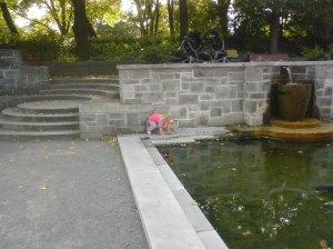 Botanical gardens Montréal